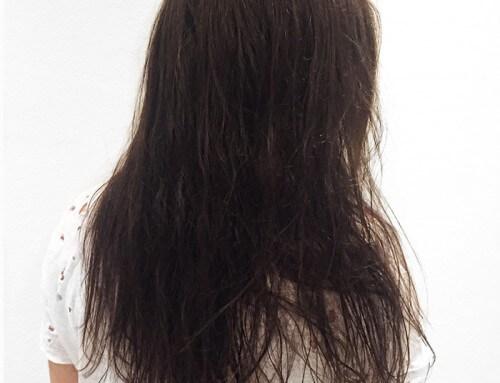 Natural Hair Colour Review: Pauline, Brown